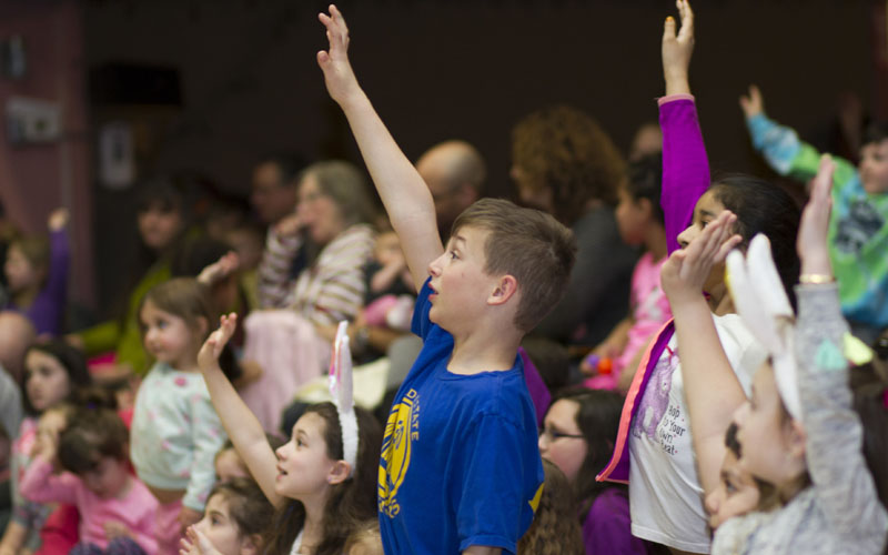 a boy raises his hand at a school show by children's entertainer Steven Craig